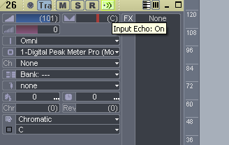 Step 09 - Setup MIDI track echo on